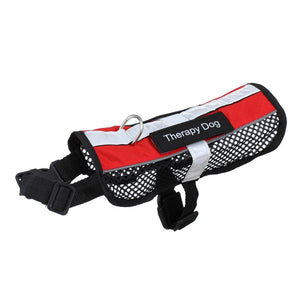 Service dog harness