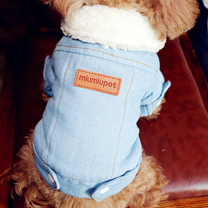 Winter Dog Jacket