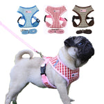 Breathable Small Dog Harness and Leash Set