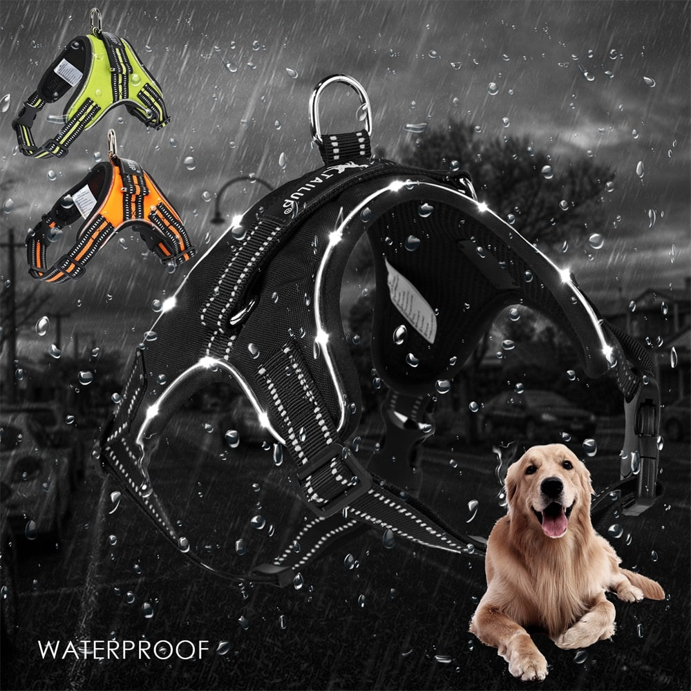 Pet Dogs Harness with LED