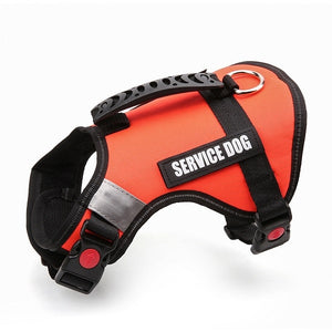 Dog Harness Service Dog