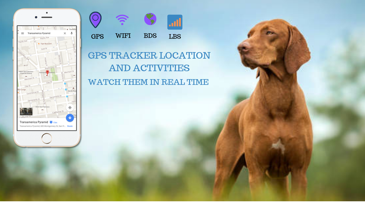 GPS Dog/Cats Tracker.