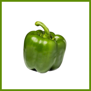Bell Pepper, Green  /LB