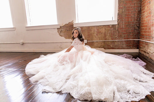 The Ava Marie Dress Long Elaborate Gown Stunning