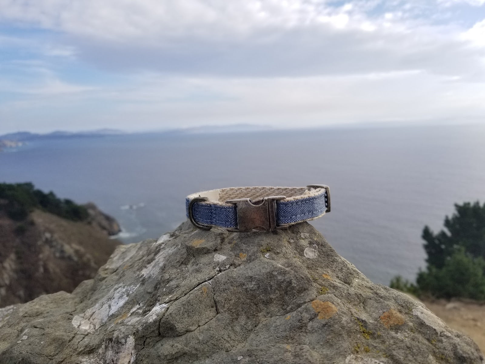 Clearwater Chambray Cat Collar