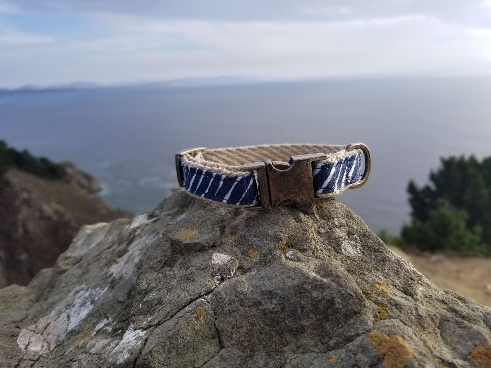 Big Sur Cat Collar