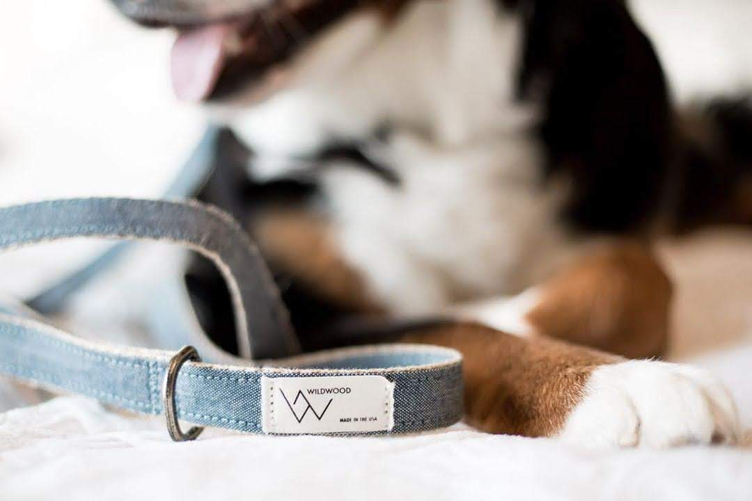 Clearwater Chambray Leash