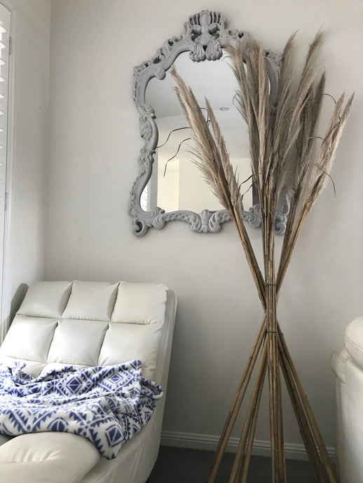 Pampas Grass: Natural Treated