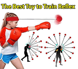 Reflex Training Ball