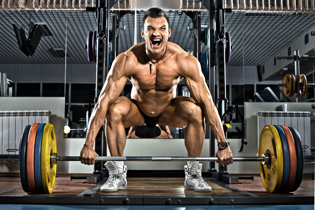 A Beginner's Guide to Getting Shredded