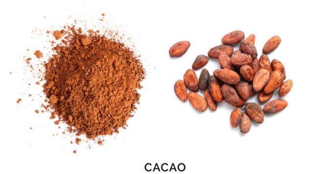 Health Benefits of Cacao