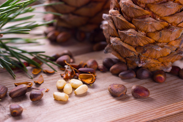 All of the Health Benefits of Pine Nuts with Recipes and More