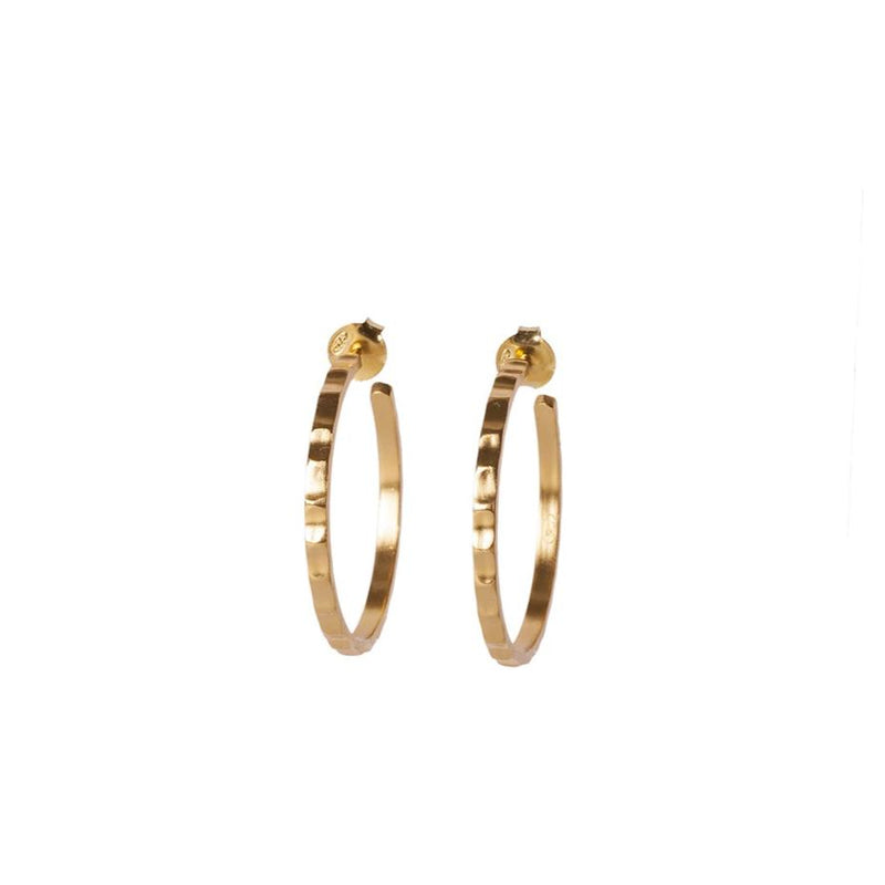 Gold Hoops - Christina Greene LLC