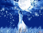 Blue Moon oil - Natural Magick Shop