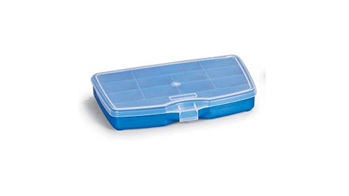 Small Organizer Storage Box with Clear Lid