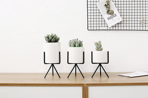 Ceramic Flower Planters with Stands (6 pcs)