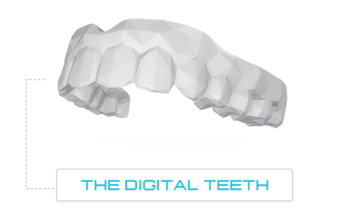 Digital Teeth developed using thousands of 3D Digital Scans