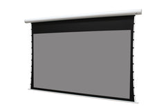 Elite Screens Saker Tab-Tension CineGrey5D, 120 inch 16:9 Electric Projector Screen