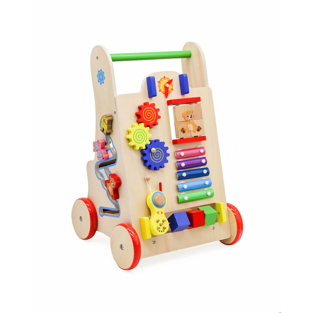 Educational Wooden Walker Push Toy 6in1