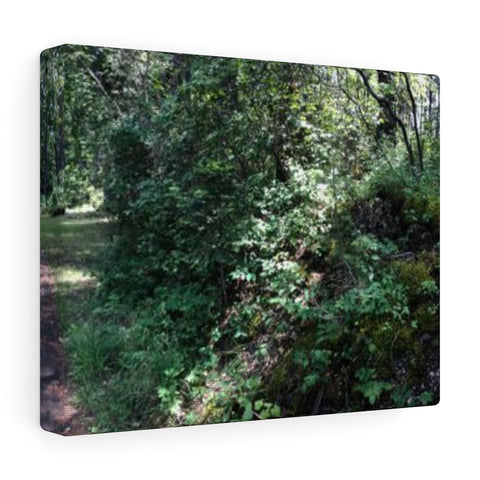 Nature's Garden Canvas Gallery Wraps