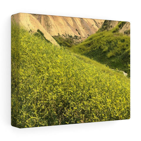 Badlands SD Stretched canvas
