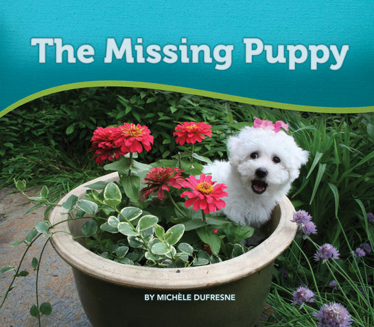 The Missing Puppy