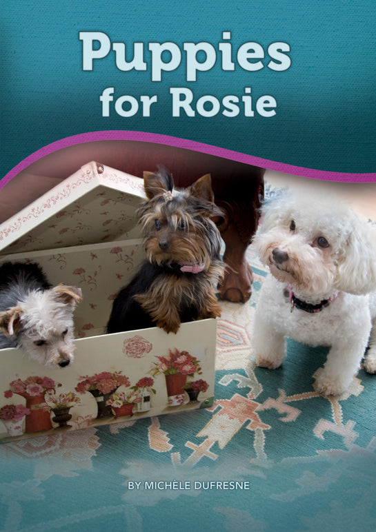 Puppies for Rosie