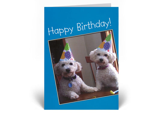 Bella and Rosie Birthday Card