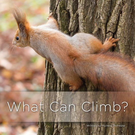 Lap Book: What Can Climb?