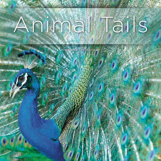 Lap Book: Animal Tails