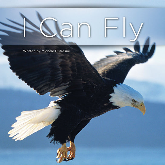 Lap Book: I Can Fly