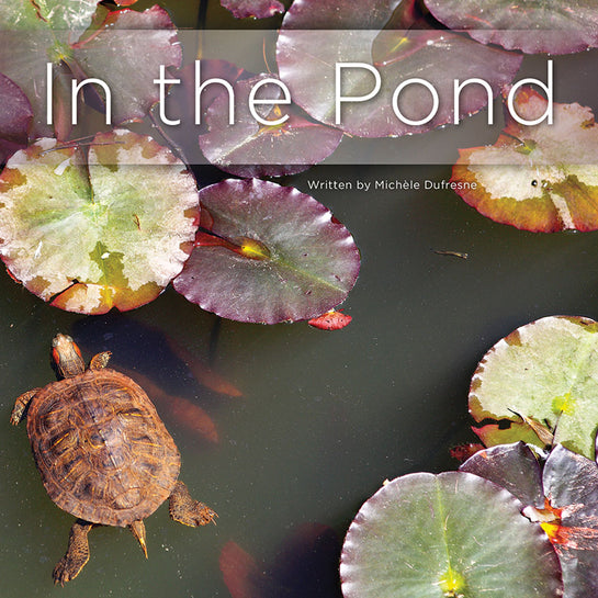 Lap Book: In The Pond