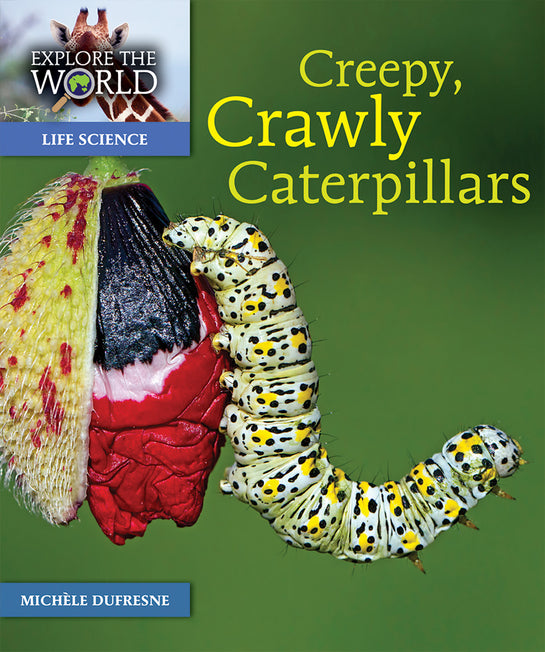 Creepy, Crawly Caterpillars