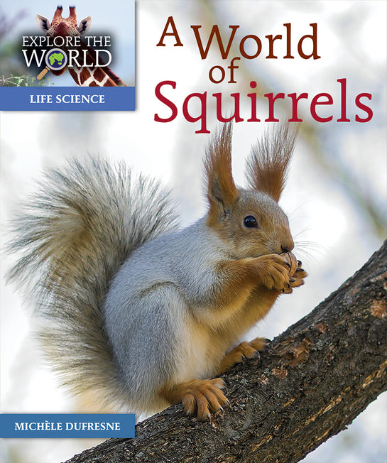 A World of Squirrels