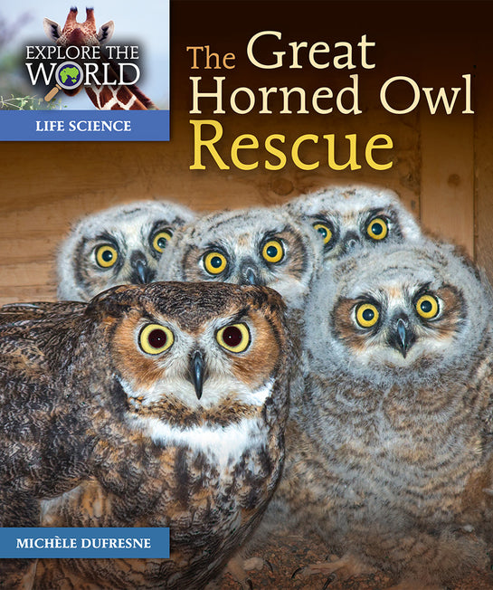 The Great Horned Owl Rescue