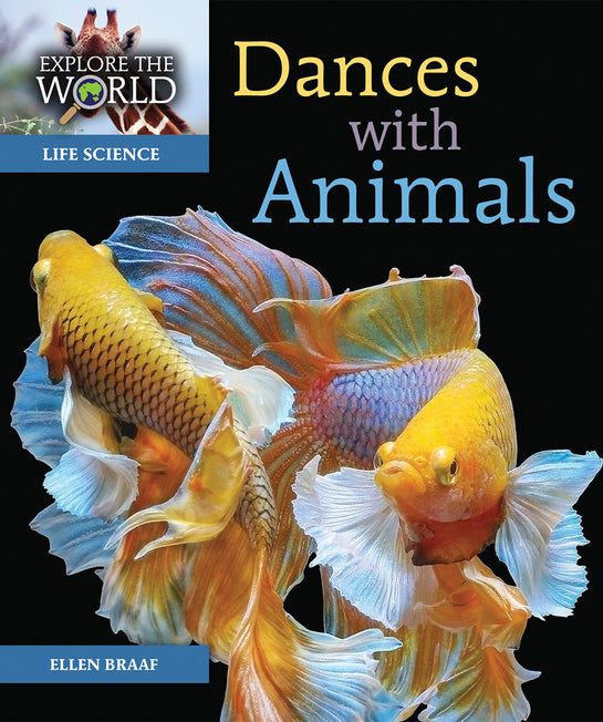 Dances with Animals