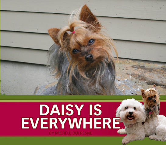 Daisy is Everywhere