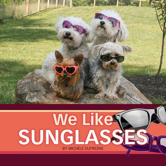 Lap Book: We Like Sunglasses