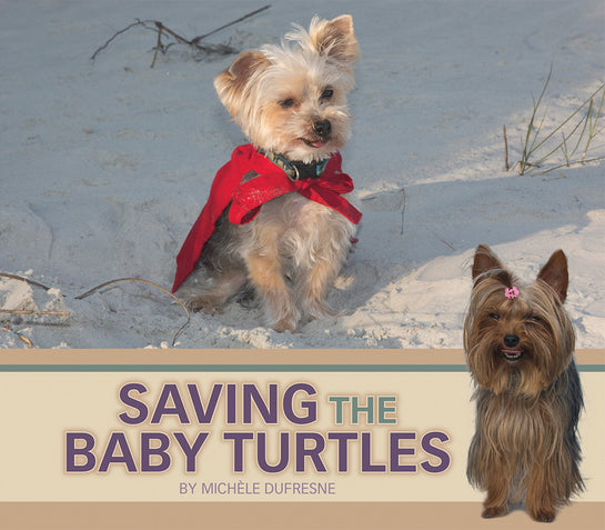 Saving the Baby Turtles