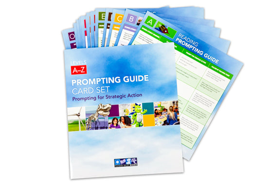 Prompting Guide Card Set