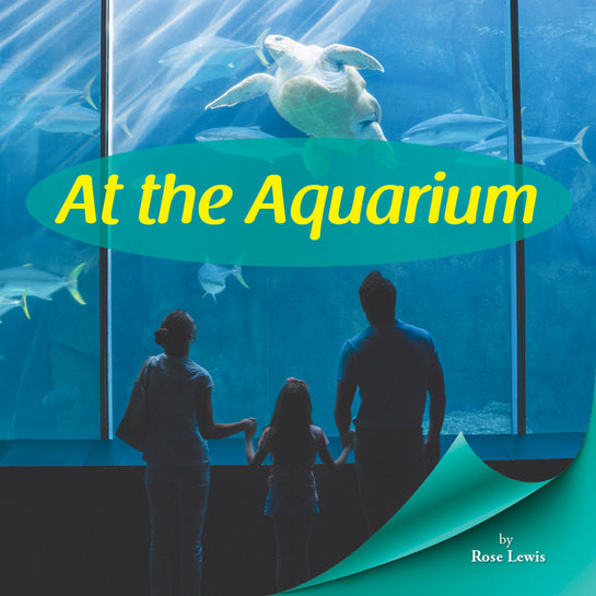 At the Aquarium