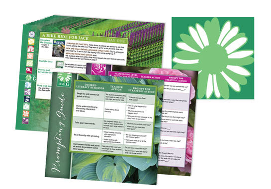 Garden Collection Lesson Cards Level G