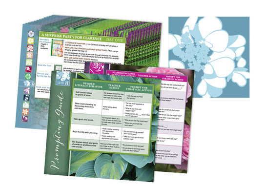 Garden Collection Lesson Cards Level H
