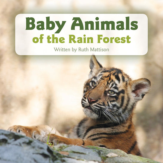 Baby Animals of the Rain Forest