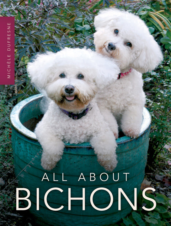 All About Bichons