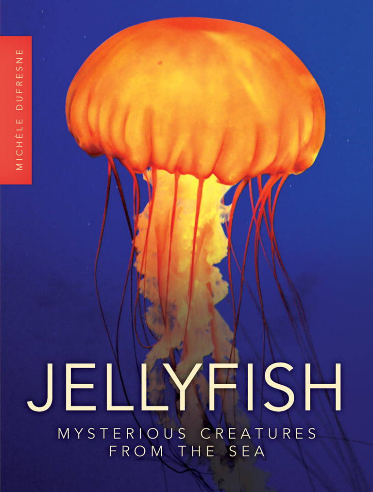 Jellyfish: Mysterious Creatures from the Sea