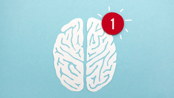 """Your brain receives """"notifications"""" whenever your touch receptors detect something new."""