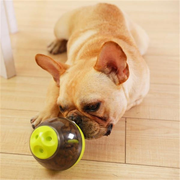 https://transparent-things.com - Pet Food Ball & Toy - Transparent-Things - #transparentthingsstore