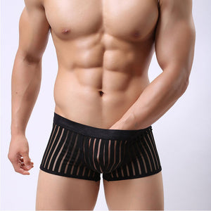 https://transparent-things.com - Striped Transparent Underwear Men's Boxers - Transparent-Things - #transparentthingsstore