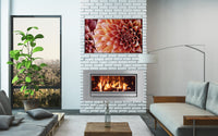 IS1200 Gas Fireplace